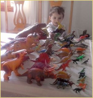 Enzo Amaral e sua coleção ainda no início
