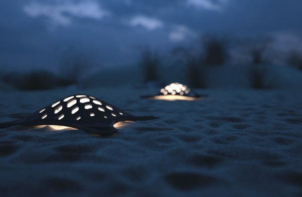 TurtleSolarLighting